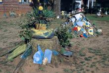 Painted rock-and-mirror grouping in Betty Avery's yard